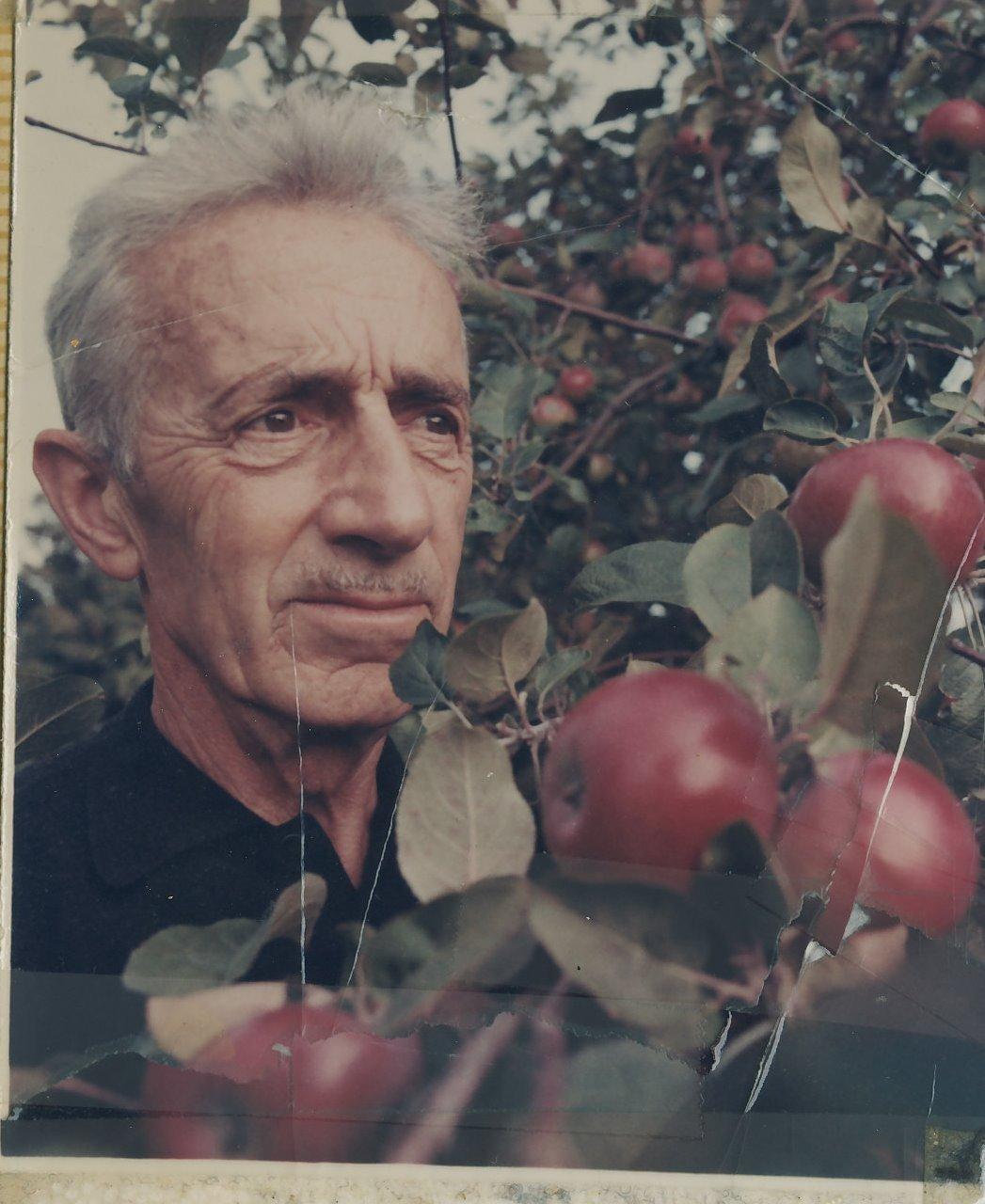 Nathan George Horwitt - cha đẻ của thiết kế mặt số đồng hồ Movado Museum